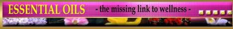 MissingLnk